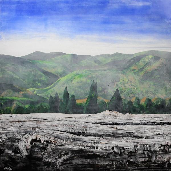 """A. Garbe: """"Holz vs. Landschaft: Schwarzwald 2018"""", Edition, signierter Kunstdruck auf Leinwand"""